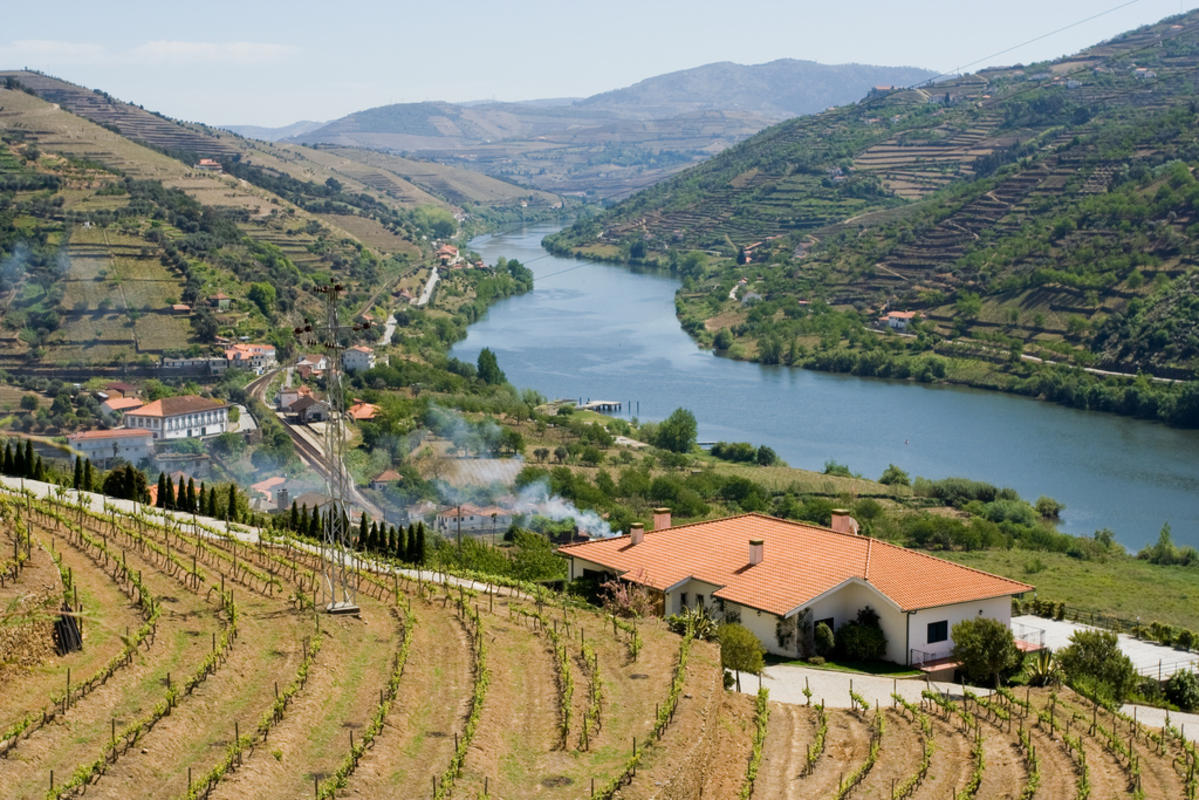 Douro River Valley by Marco Varisco