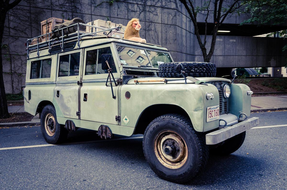 """Safari"" by Nicholas Erwin via Flickr Creative Commons"