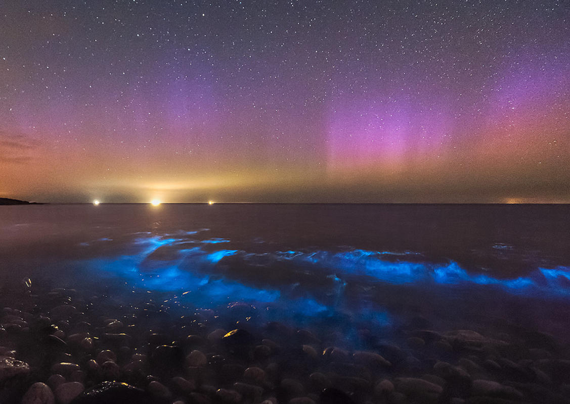 """Bioluminescent Waves & Aurora - Anglesey"" by Kris Williams via Flickr Creative Commons"