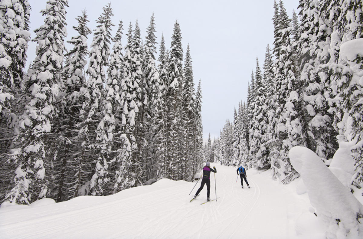 Photo Credit: Kelly Funk via Sun Peaks Resort