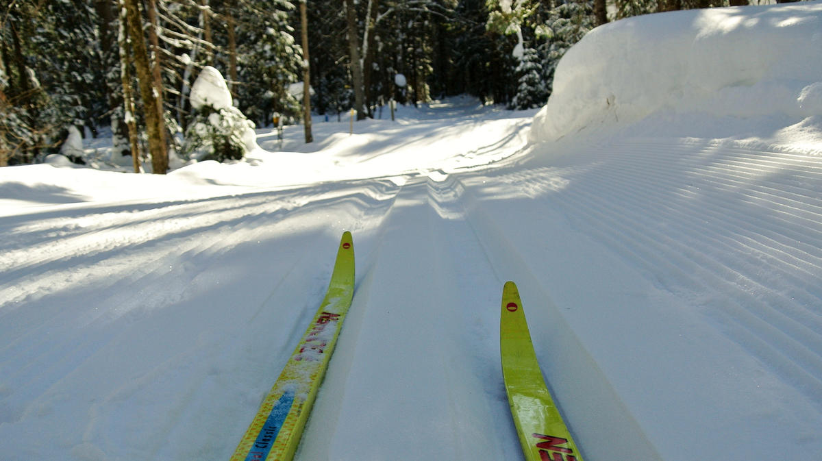 """Skiing at Arrowhead Provincial Park"" by Richard BH via Flickr Creative Commons"
