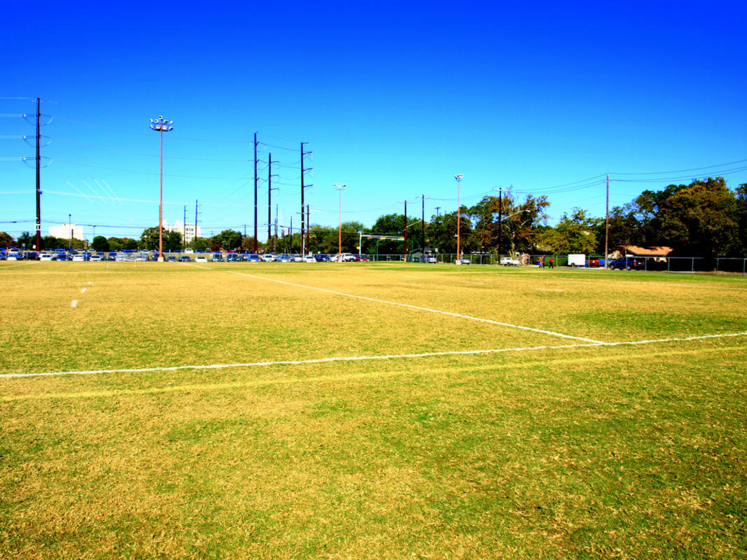 """Intramural Fields, UT Austin"" by Niyantha Shekar"