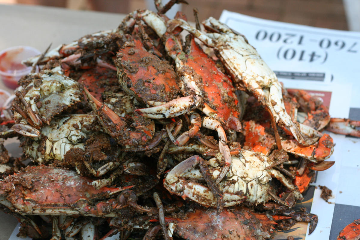 """Crabs!"" by Lauren via Flickr Creative Commons"