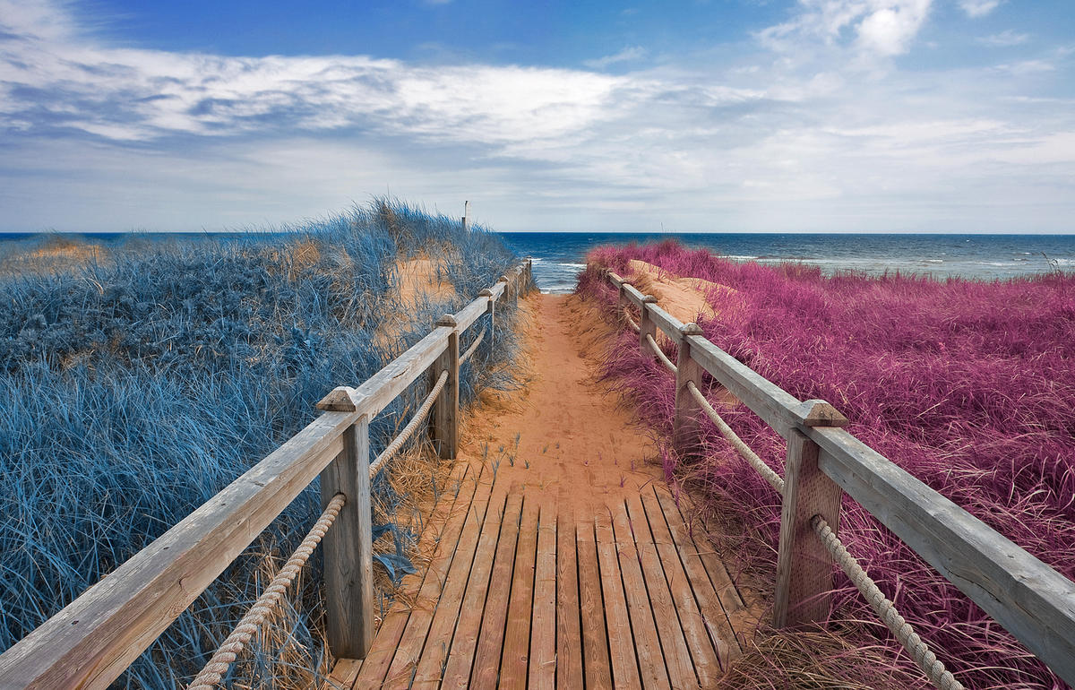 Split Tone Beach Boardwalk - Blue & Pink by Nicolas Raymond via Flickr Creative Commons