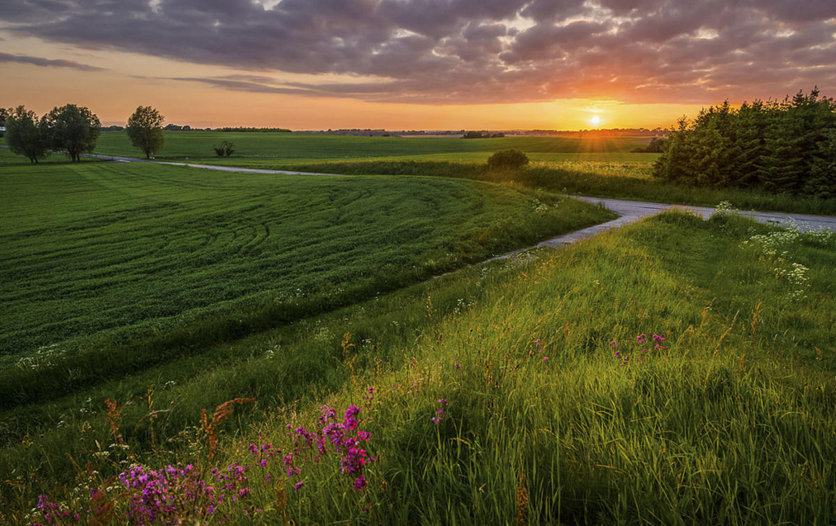 Sunset from the old mound Photo by Jacob Surland via Flickr Creative Commons