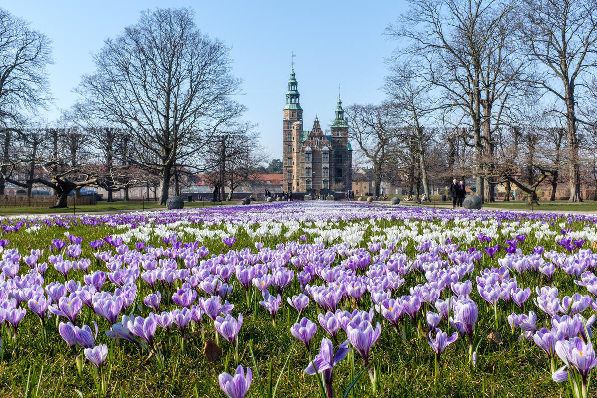 Spring in Kongens Have, Copenhagen Photo by Kristoffer Trolle via Flickr Creative Commons