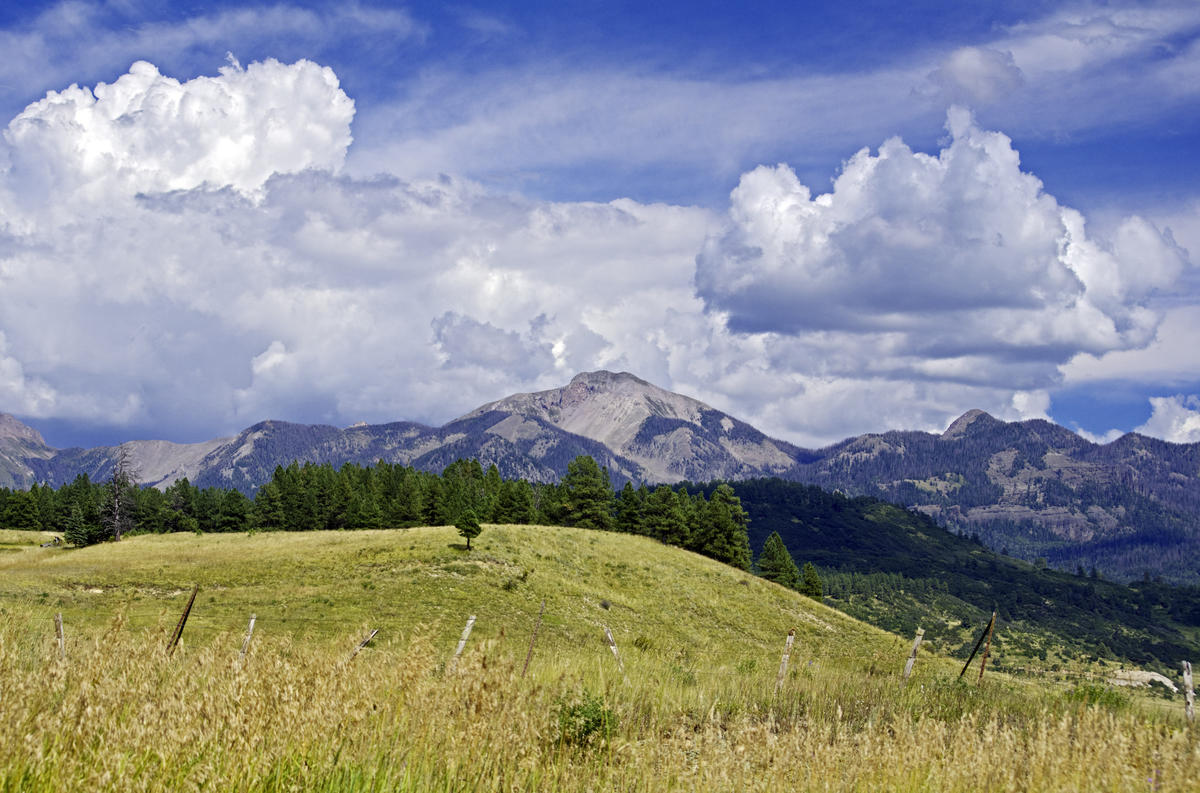Summer in Southwestern Colorado Photo by Daniel via Flickr Creative Commons