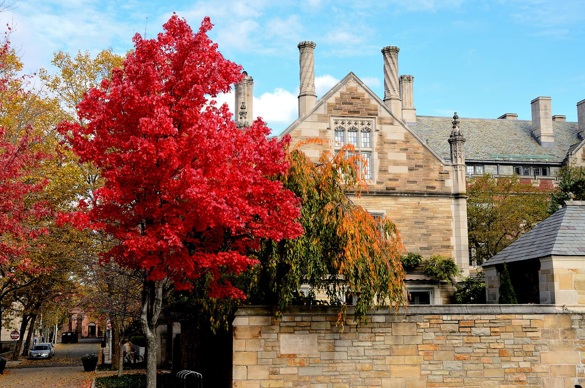 Yale Photo by Patrick Franzis via Flickr Creative Commons