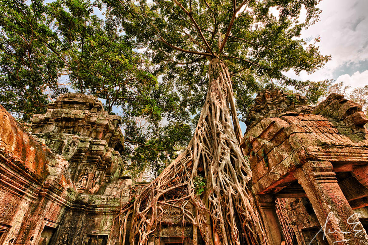 Ta Prohm aka Tomb Raider Temple Cambodia Photo by Sacha Fernandez via Flickr Creative Commons
