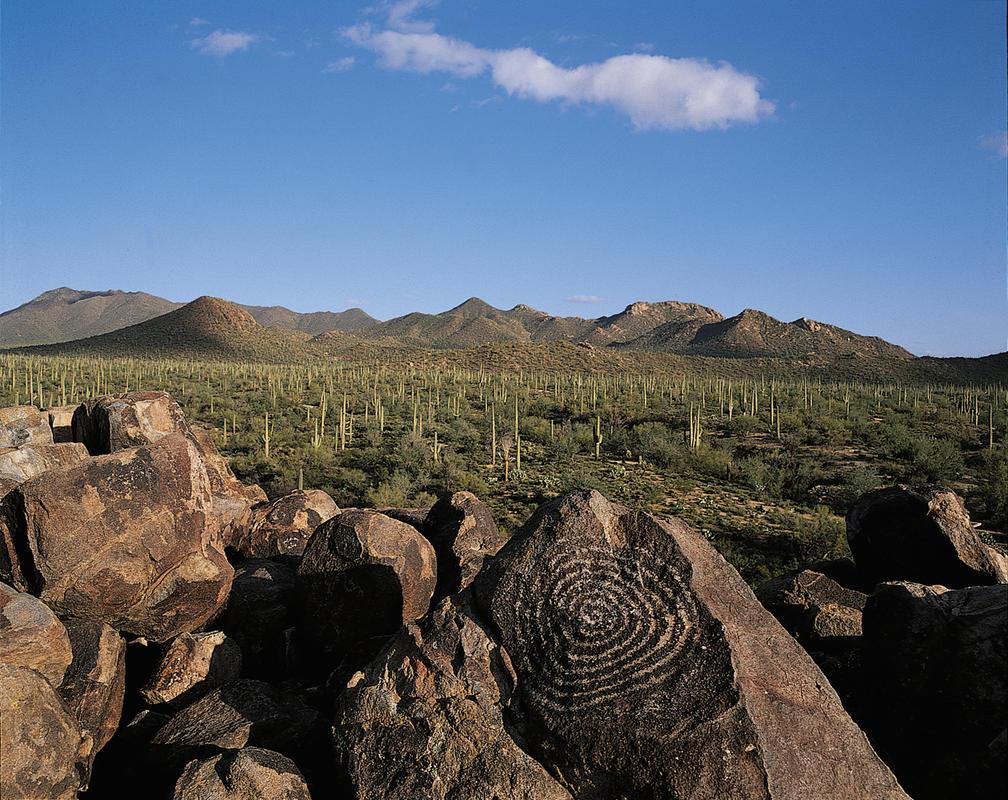 Photo Courtesy of Visit Tucson