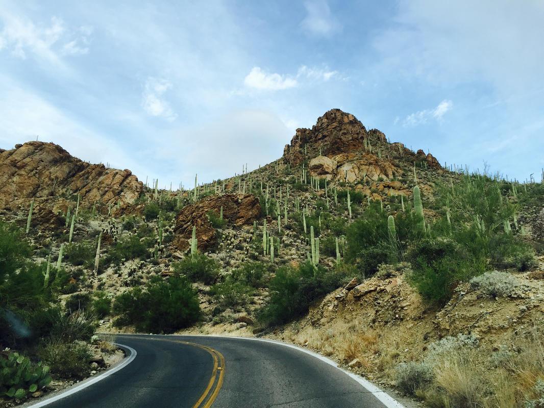 Photo courtesy Visit Tucson