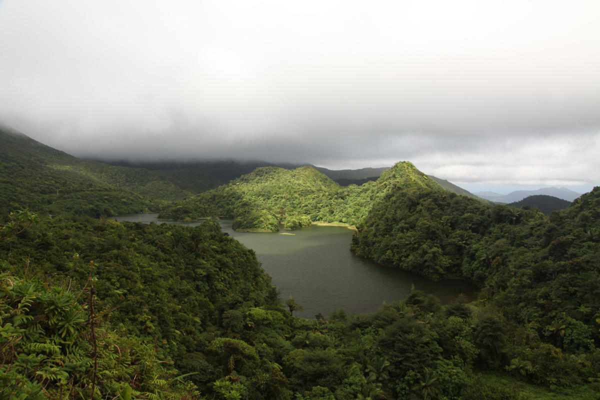 Freshwater Lake, Dominica Photo by Liam Quinn via Flickr Creative Commons