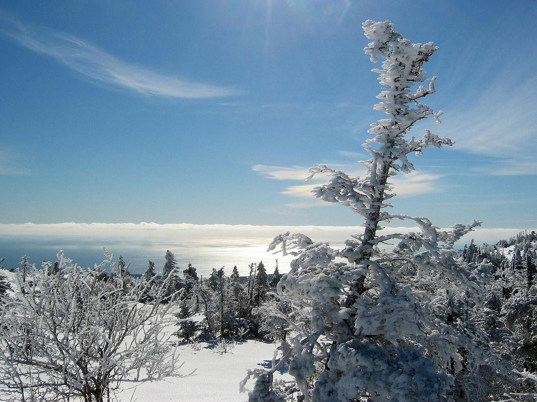 Acadia National Park Photo via Pixabay