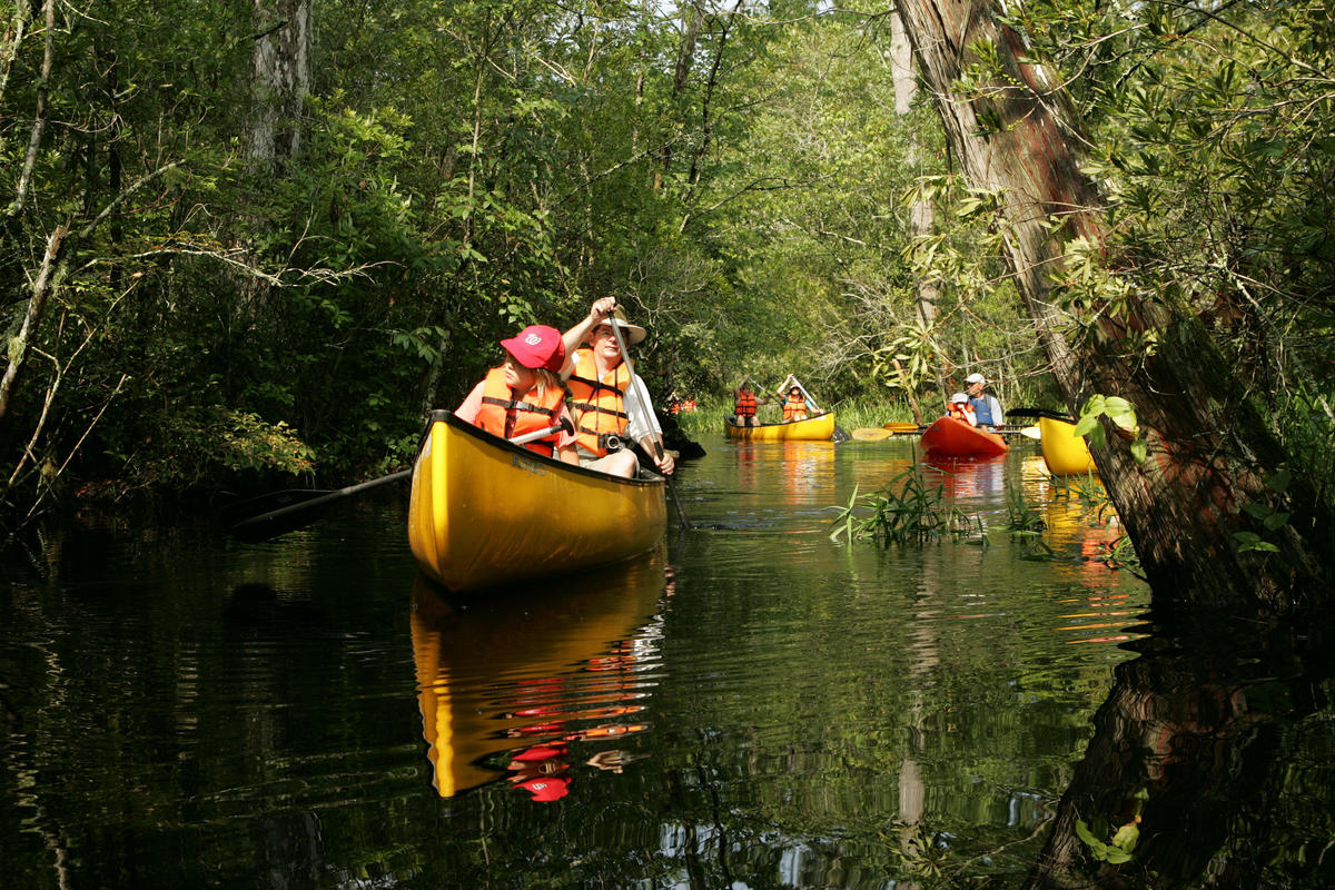Paddling the canals Photo by U.S. Fish and Wildlife Service via Flickr Creative Commons