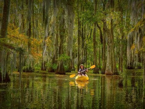 Rf.2016 paddling guide