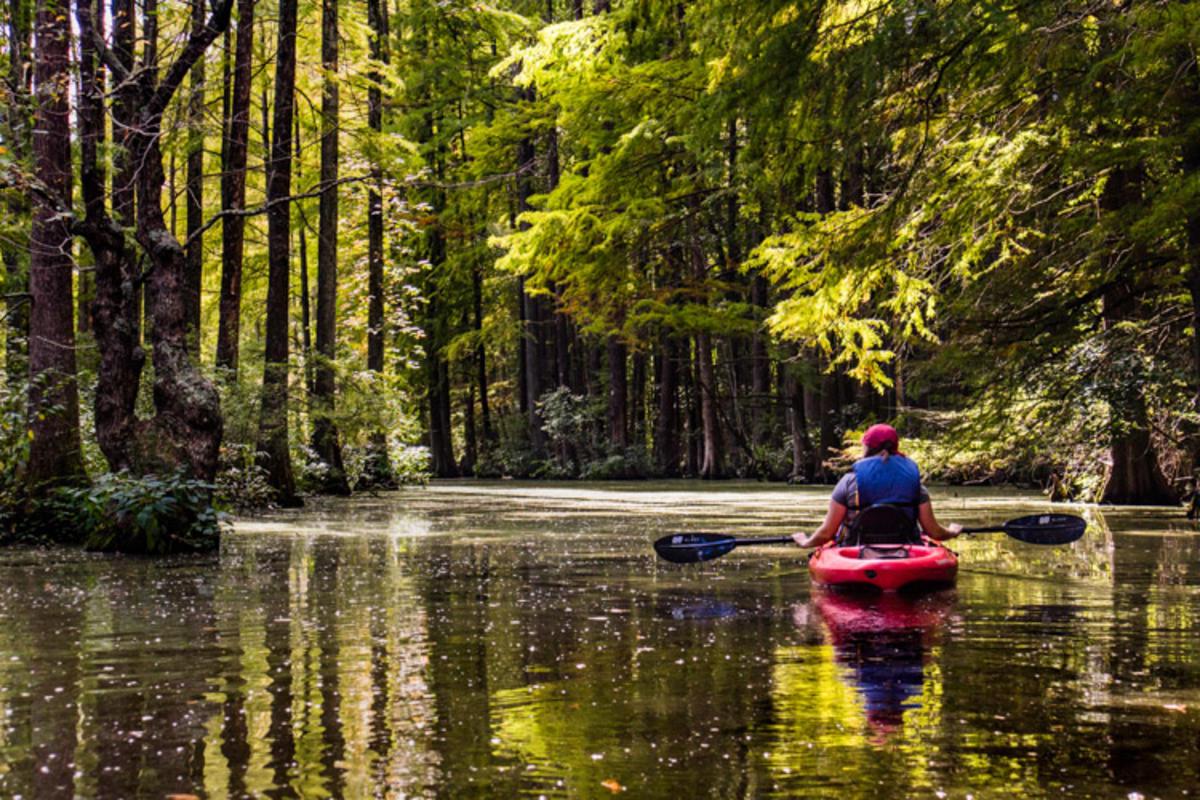 Photo courtesy Delaware State Parks