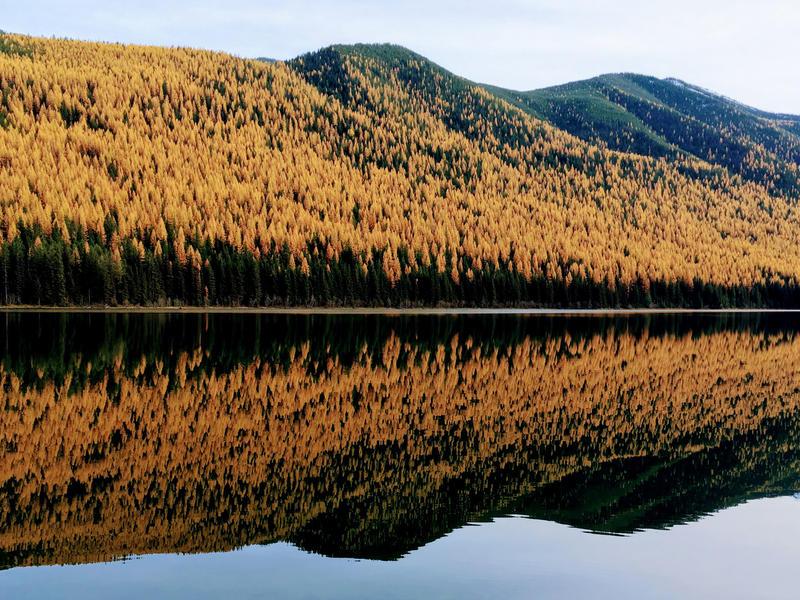 Explore whitefish fall stanton lake 2 %281%29