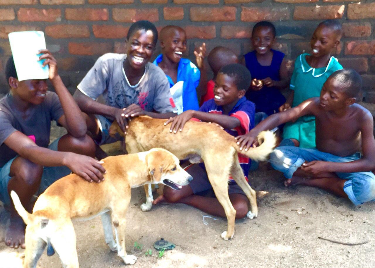 Diese Kinder freuen sich über Hilfe für ihre vierbeinigen Freunde