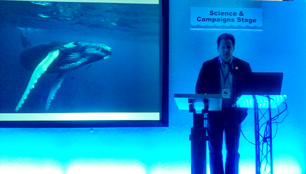 The author presenting on the Science and Campaigns stage at WHALEFEST 2015.""