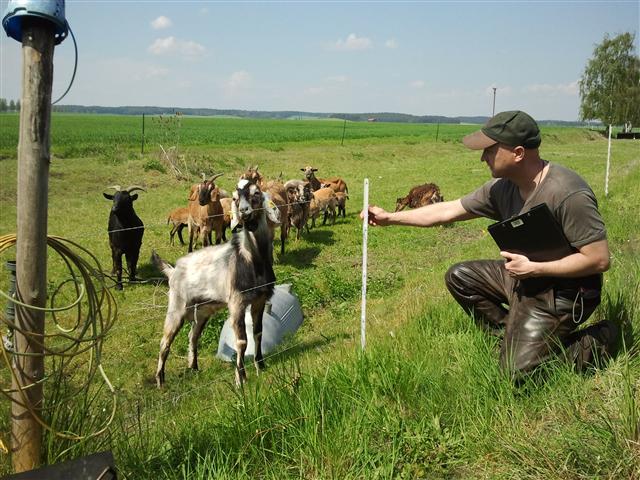 Wolfsbetreuer Torsten Fritz prüft die Zaunhöhe