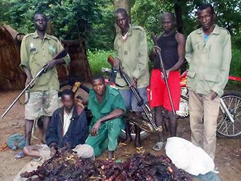 Spotlight Cameroon: anti-poaching trainings already bearing fruit