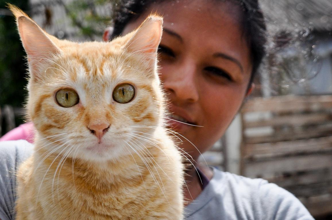 We believe that by helping people we can help animals, and by helping animals we
