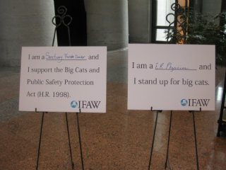 Example signage and name tags from the event point to the Big Cats and Public Safety Protection Act currently under consideration.