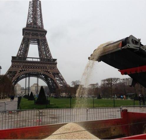 Destruction en février 2014 de trois tonnes d'ivoire saisi par la France