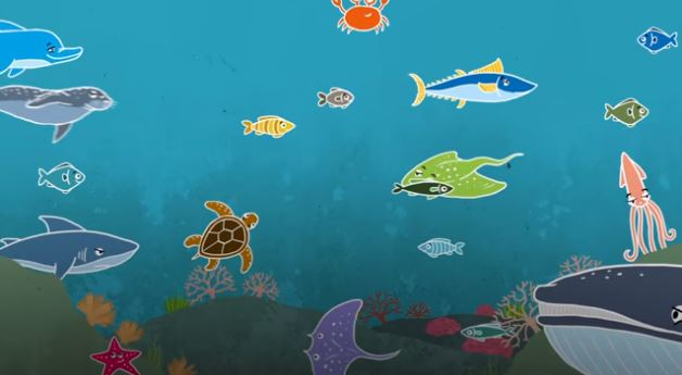 New campaign by IFAW partner Seas at Risk