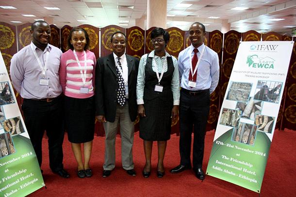 IFAW staff Samuel Matua, Jacqueline Nyagah, Steve Njumbi, Beatrice Owayo and Isa