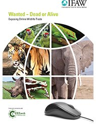 Combating online wildlife trafficking in the Middle East
