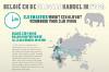 België vernietigt morgen 1500 kilo ivoor, hulde voor de douane