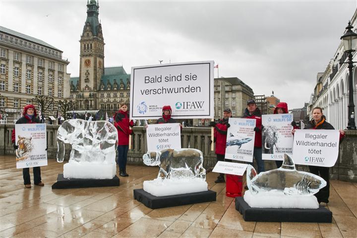 Aktivisten des IFAW demonstrierten in Hamburg für besseren Artenschutz