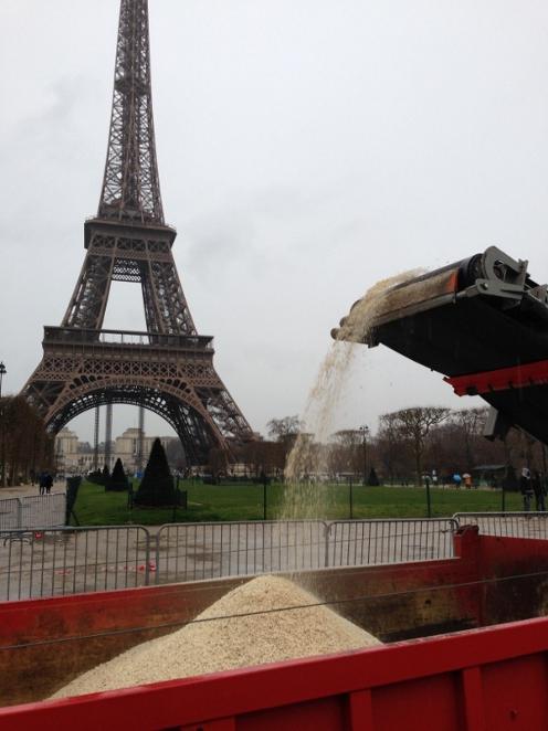 Frankreich zerstört drei Tonnen beschlagnahmtes Elfenbein.