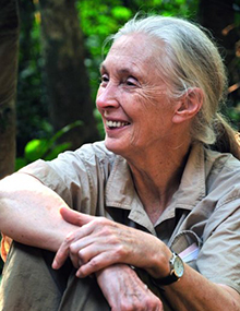 Jane Goodall, Ph.D., DBE, Founder, the Jane Goodall Institute & UN Messenger of