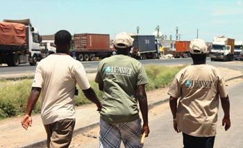 From left: Iregi Mwenja, Jim Nyamu of  the Elephant Neighbor's Center, and Steve Njumbi, Head of Programs, IFAW East Africa walk by dozens of freight trucks lining Machakos Junction on the Mombasa-Nairobi road