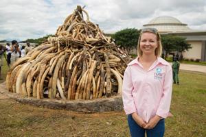 Le Malawi reporte la destruction de ses stocks d'ivoire