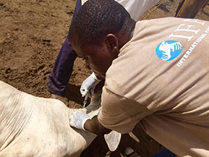 IFAW Relief Work for Animals Begins in Malawi