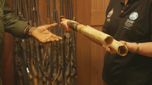 Operation WENDI: IFAW and INTERPOL team up to dismantle  ivory trafficking in We