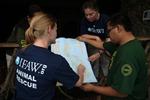 Noodhulpteam IFAW naar de Filipijnen