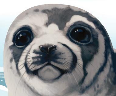 La chasse commerciale aux phoques du Canada : une pratique cruelle et inutile