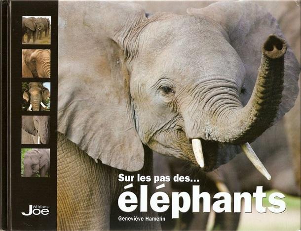 """Couverture du livre """"Sur les pas des éléphants"""" de Geneviève Hamelin."""