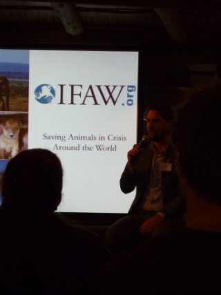 Poor animal welfare is simply unacceptable, and IFAW helps build animal welfare values.
