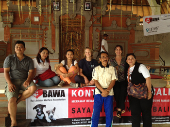 IFAW and BAWA help banjars take responsibility of their dogs' health