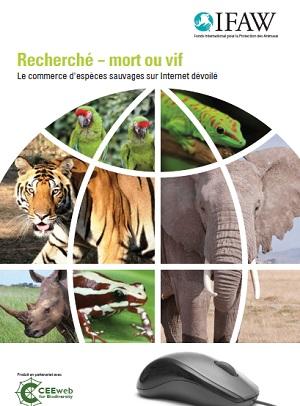 Recherché - mort ou vif : Le commerce d'espèces sauvages sur Internet dévoilé