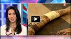 France 2 suit IFAW et remonte la route du trafic de l'ivoire