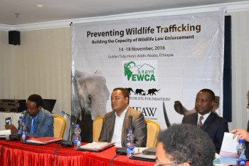 Wildlife Law Enforcement Agencies Gather to Enhance Skills of Wildlife Law Prose