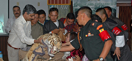 IFAW and law enforcement officials examine illegal goods.