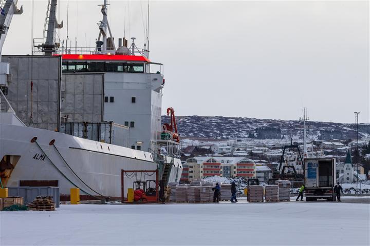 Finnwalfleisch wird zum Transport in Island auf ein Schiff geladen
