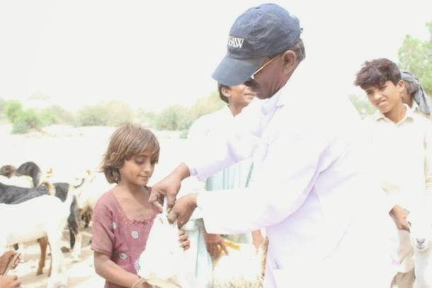 IFAW and partners still responding to drought in Pakistan